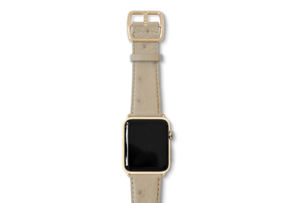 Canvasback ostrich leather band with gold buckle