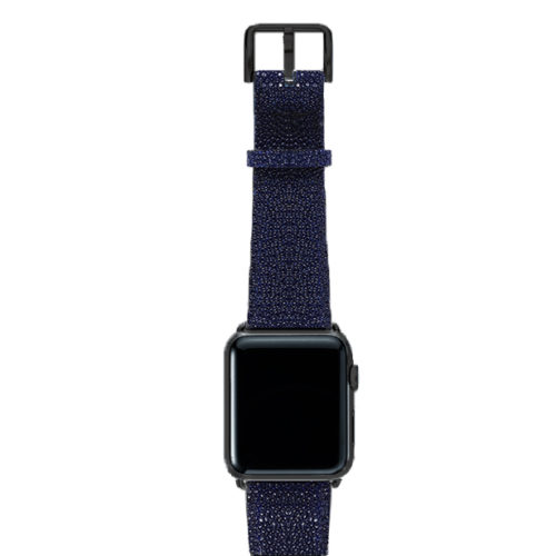Royal-Blue-ont-top-with-stainless-black-adaptors