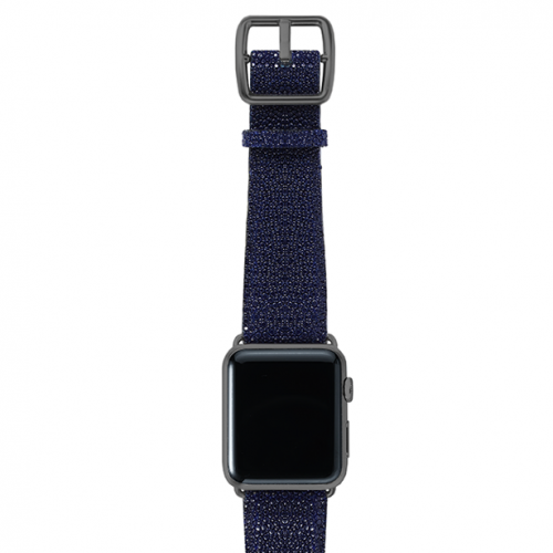 Royalblue-stingray-leather-band-top-spacegrey