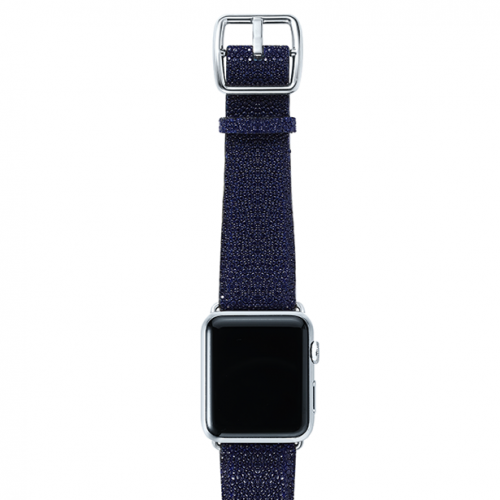 Royalblue-stingray-leather-band-top-stainless
