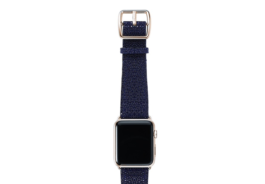 galuchat_Royal-Blue-band-with-stainless-gold-adaptors