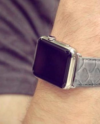 picturedrock-grey-real-pythion-Apple-watch-band