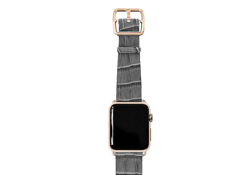 reptilia_grey-band-with-stainless-gold-adaptors