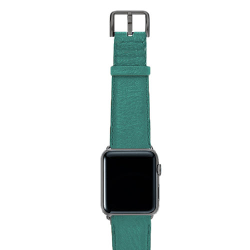 Turquoise-nappa-band-on-top-with-space-grey-adaptors