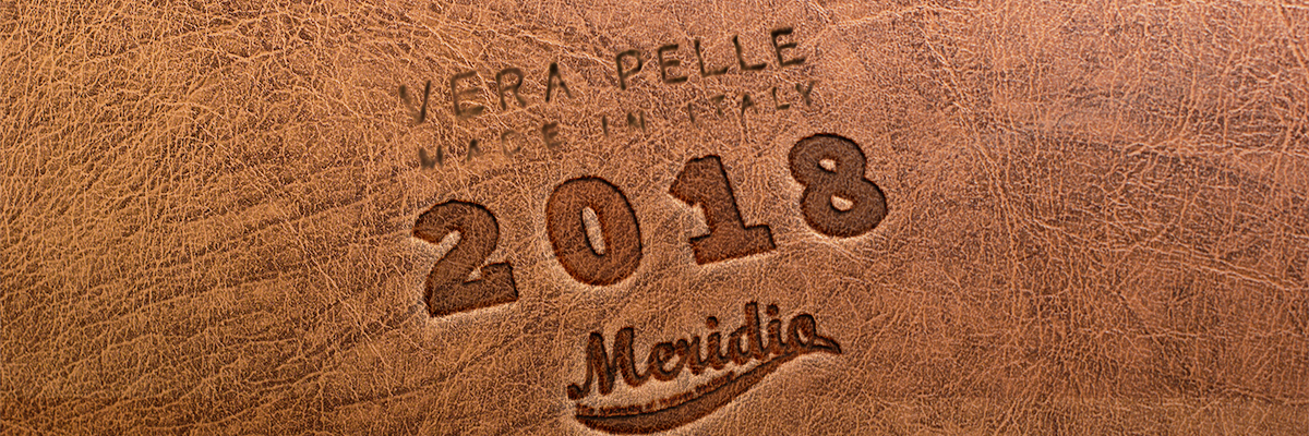 Milestones and new challenges of a year with Meridio