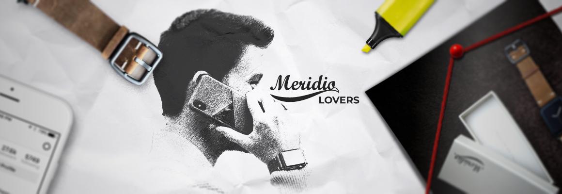 Meridio leather's accessory